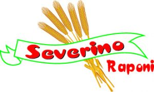 severino logo copy